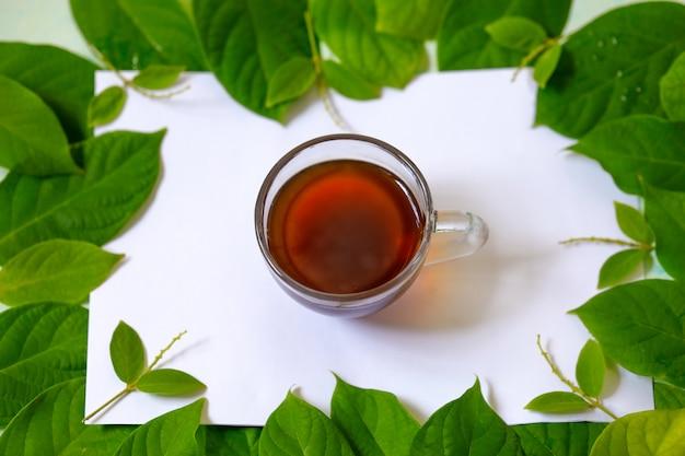 Foto orizzontale con autunno, foglie verdi e una tazza di tè nero su uno sfondo bianco