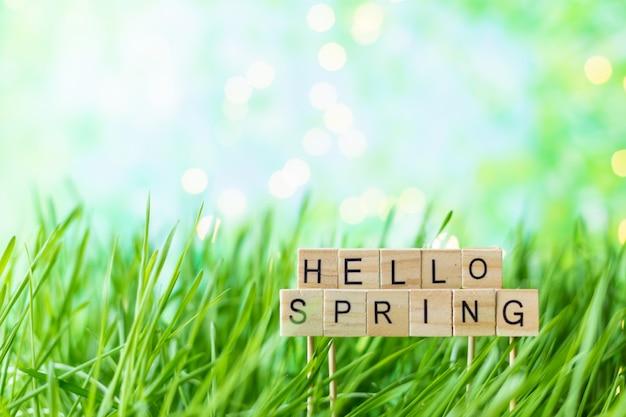 Frase ciao primavera sullo sfondo di erba verde estate con la rugiada