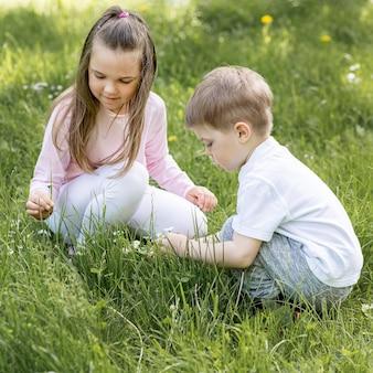 Fratello e sorella che giocano nell'alta vista dell'erba