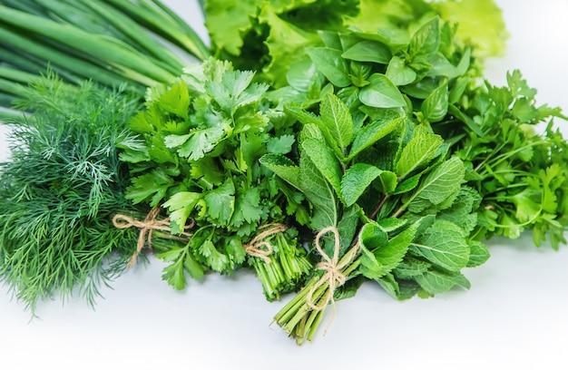 Fresche verdure fatte in casa dal giardino. isolato