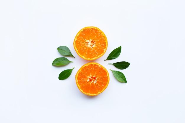 Frutta arancione e foglie verdi su sfondo bianco.
