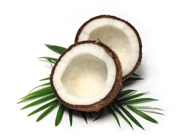 Frutta della noce di cocco su fondo bianco