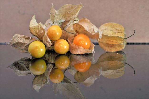 Frutta di uva spina di capo.