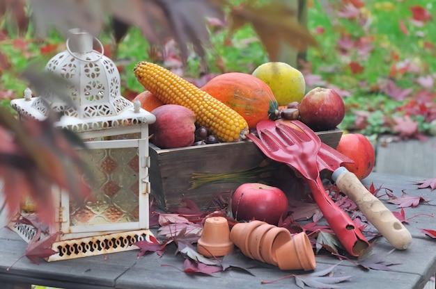 Frutta e verdura su un tavolo da giardino con strumenti e piccoli vasi