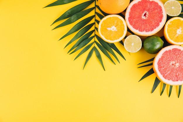 Frutta estiva foglie di palma tropicale, calce, pompelmo e arancia su sfondo giallo.