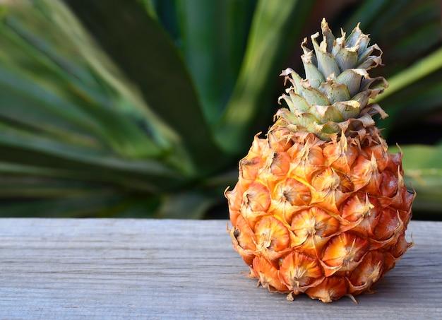 Frutta fresca dell'ananas maturo in giardino tropicale sulla vecchia tavola di legno