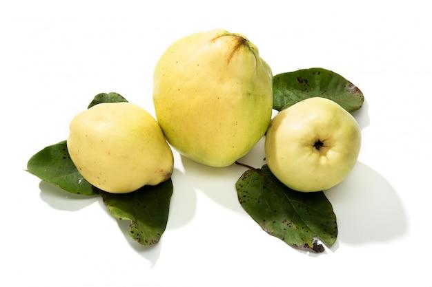 Frutta fresca della cotogna isolata su fondo bianco
