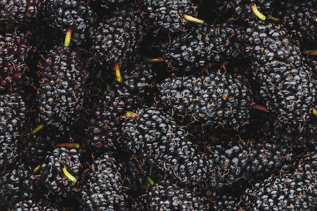Frutta matura e fresca di gelso nero