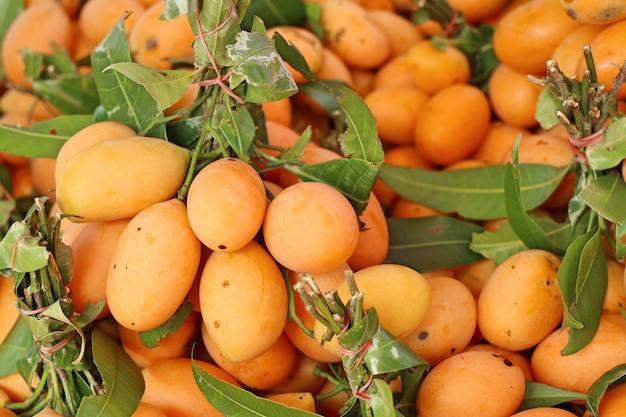 Frutta tailandese di plango o prugna mariana