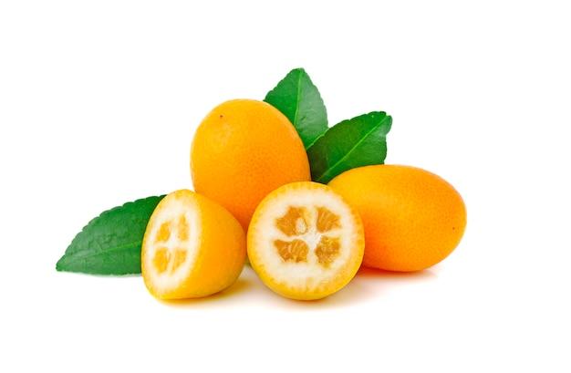Frutti del kumquat con la foglia isolata