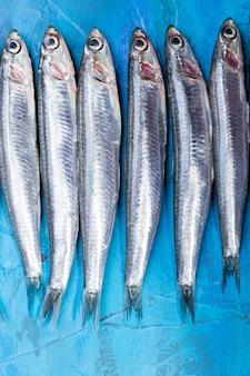 Frutti di mare. piccoli pesci di mare, acciughe, sardine