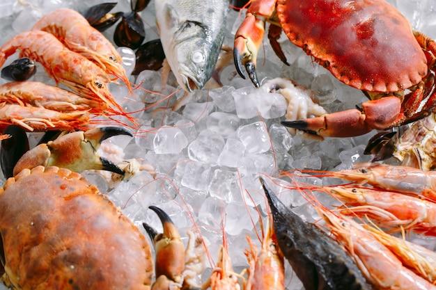 Frutti di mare su ghiaccio, granchi, storioni, crostacei, gamberi, rapana, dorado, su ghiaccio bianco.