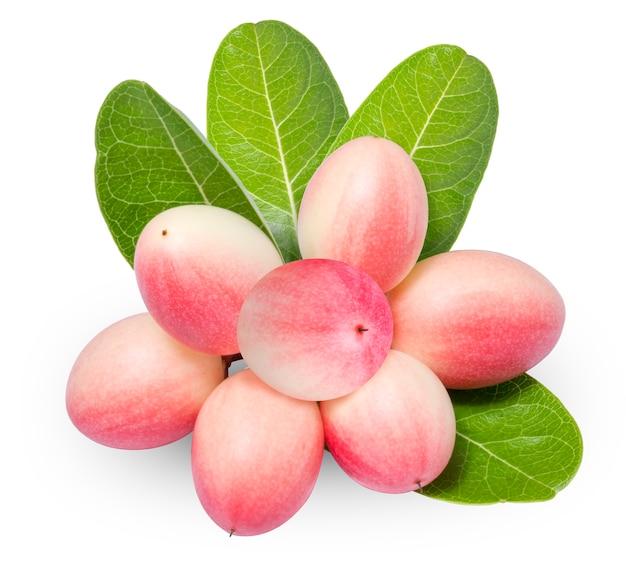 Frutti di prugna carunda o karonda isolati su bianco. (con tracciato di ritaglio)