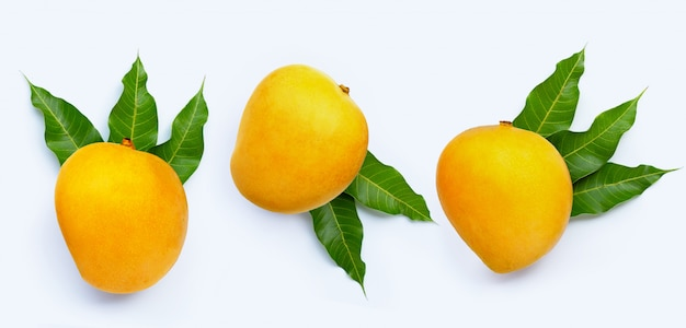 Frutto tropicale, mango.
