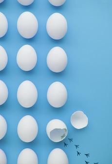 Fuga di pollo dall'uovo, concezione della libertà