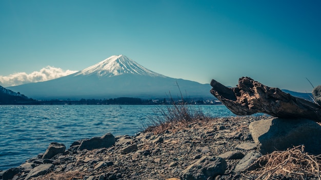 Fuji mountain view