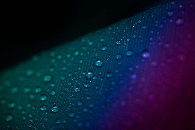 Full frame di goccioline sulla superficie colorata della piuma