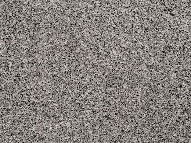 Full frame di licheni che crescono sulla roccia