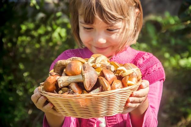 Funghi di bosco nelle mani di un bambino. messa a fuoco selettiva