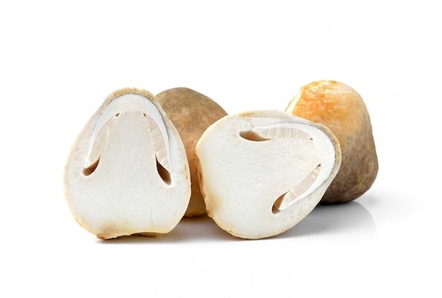 Funghi di paglia di riso freschi, la volvacea di volvariel su spazio bianco