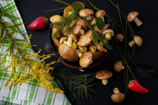 Funghi di raccolto della foresta ed erba selvatica gialla