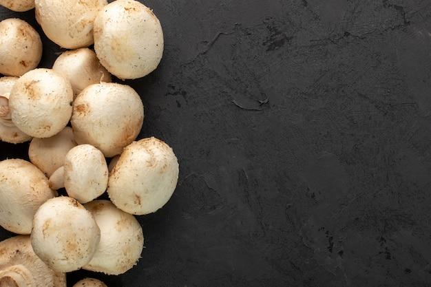 Funghi raccolti freschi freschi dei funghi prataioli bianchi su fondo grigio