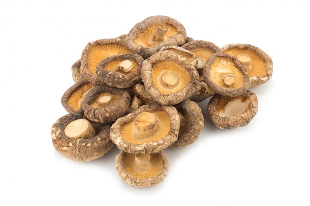 Funghi secchi su sfondo bianco