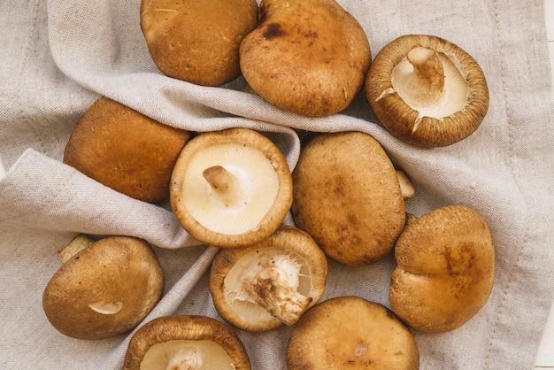 Funghi sul tovagliolo bianco