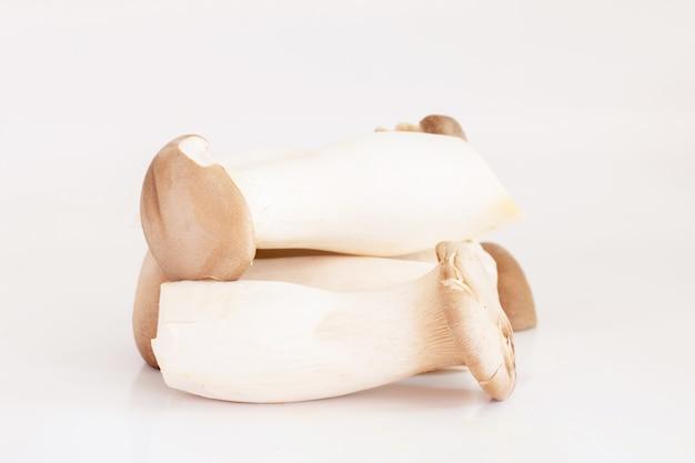 Fungo di ostrica di re o fungo di eryngii isolato su bianco