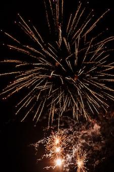 Fuochi d'artificio colorati sul cielo nero. giorno dell'indipendenza 4 luglio.