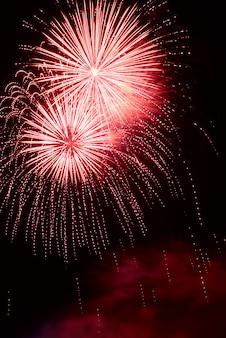 Fuochi d'artificio di celebrazione di nuovo anno