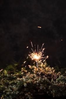 Fuochi d'artificio palmare vista frontale con sfondo nero