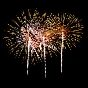 Fuochi d'artificio su un cielo notturno
