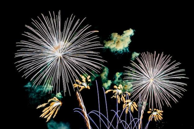 Fuochi d'artificio sul cielo notturno in bianco, spettacolo per la celebrazione