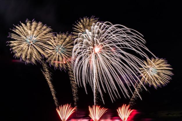 Fuochi d'artificio sullo sfondo del cielo.