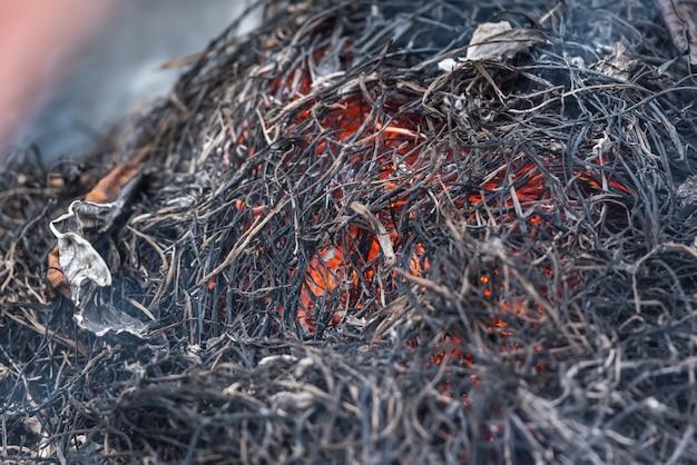 Fuoco che brucia erba secca pericolo per l'ambiente