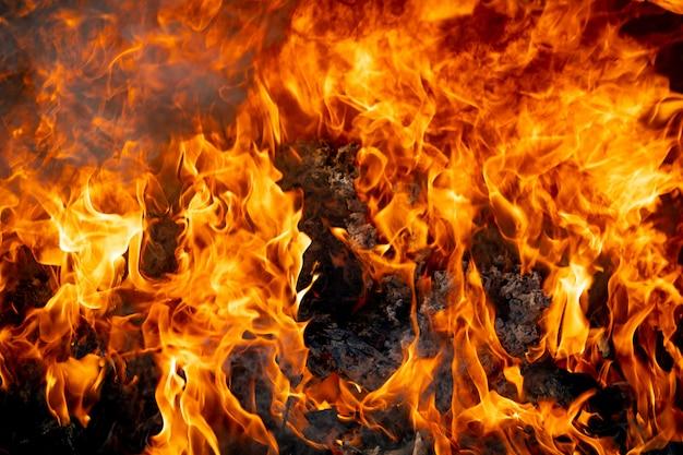 Fuoco della fiamma che brucia su fondo nero