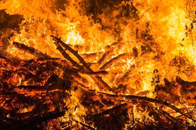 Fuoco, erba bruciata e piccoli alberi.