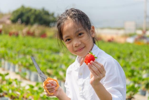 Fuoco selettivo del bambino felice della ragazza che tiene le fragole organiche rosse fresche nel giardino