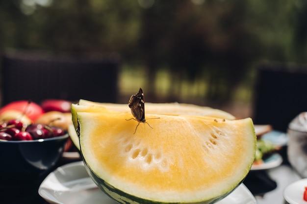 Fuoco selettivo della farfalla sul melone dolce giallo