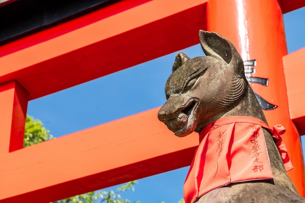 Fushimi inari stone fox guarda i cancelli di legno. si crede che le volpi siano messaggeri di dio.