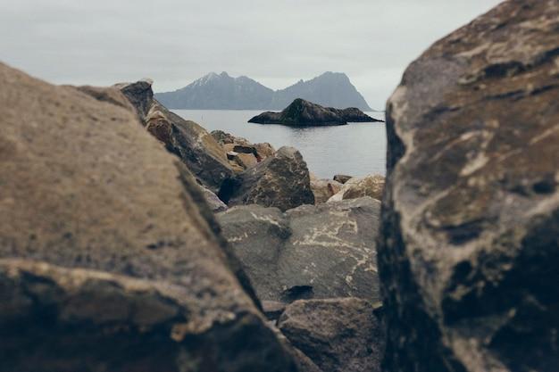 Gabbiano che vola tra le rocce del mare del nord una giornata nebbiosa e fredda.