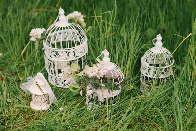 Gabbie per uccelli del metallo bianco con un ramo di un melo di fioritura sull'erba verde