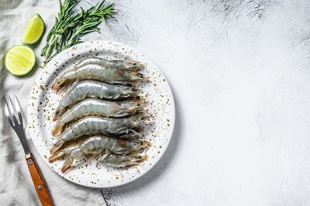 Gamberetto gigante crudo fresco di scampo su un piatto bianco. vista dall'alto. copia spazio