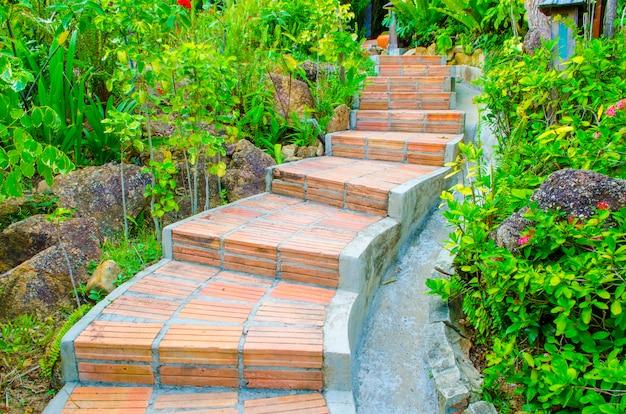 Garden walkway in parco naturale all'aperto