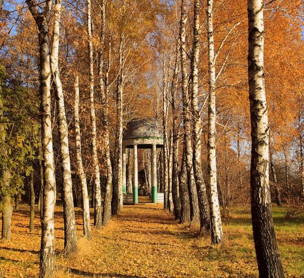 Gazebo e alberi di autunno nel parco