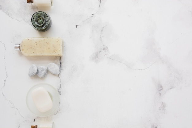 Gel doccia saponetta e decorazioni con spazio copia
