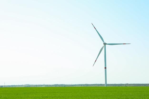 Generatore eolico in un campo di erba verde, spazio per testo. splendida vegetazione primaverile