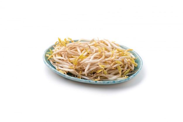 Germi di soia su bianco isolato