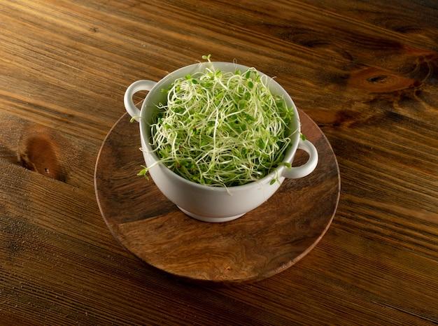 Germogli del trifoglio, micro concetto sano verde di cibo